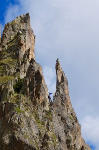 Not Napes Needle